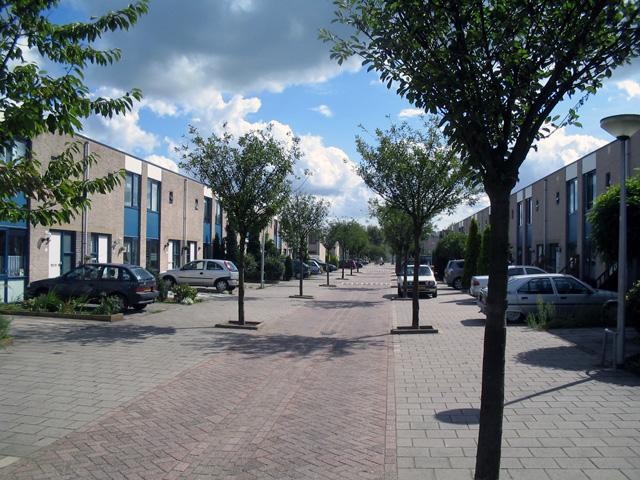 Straat in woonwijk